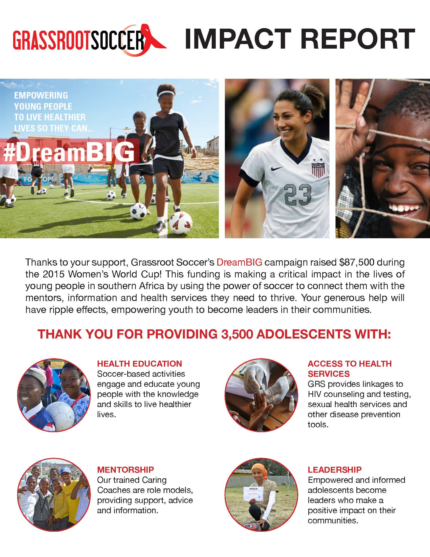 Dream BIG Impact Report p.1
